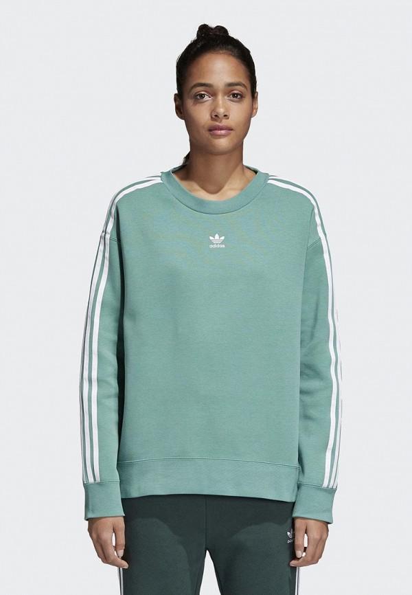 Свитшот adidas Originals adidas Originals AD093EWALOX6