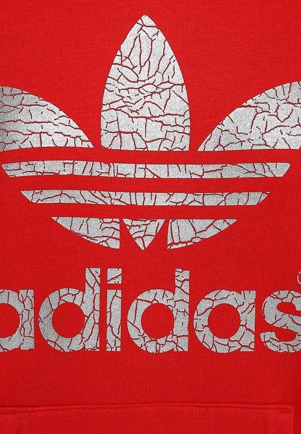 Флисовая толстовка Adidas Originals (Адидас Ориджиналс) S19825: изображение 3