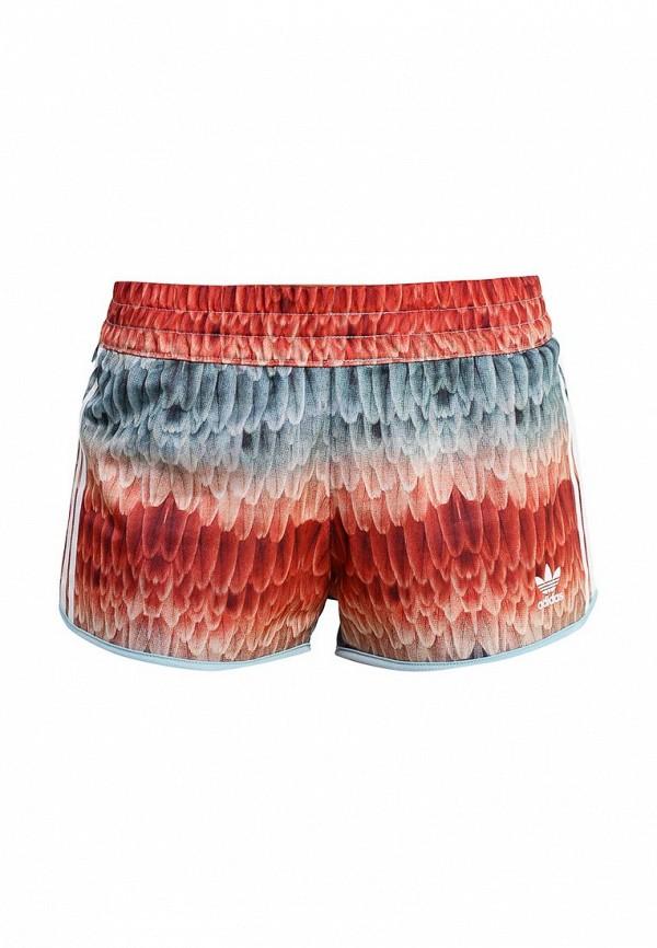 Женские спортивные шорты Adidas Originals (Адидас Ориджиналс) S19339: изображение 1