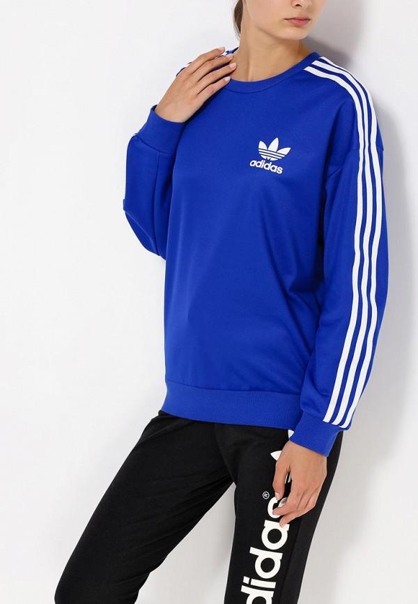 Толстовка Adidas Originals (Адидас Ориджиналс) AB2083: изображение 2