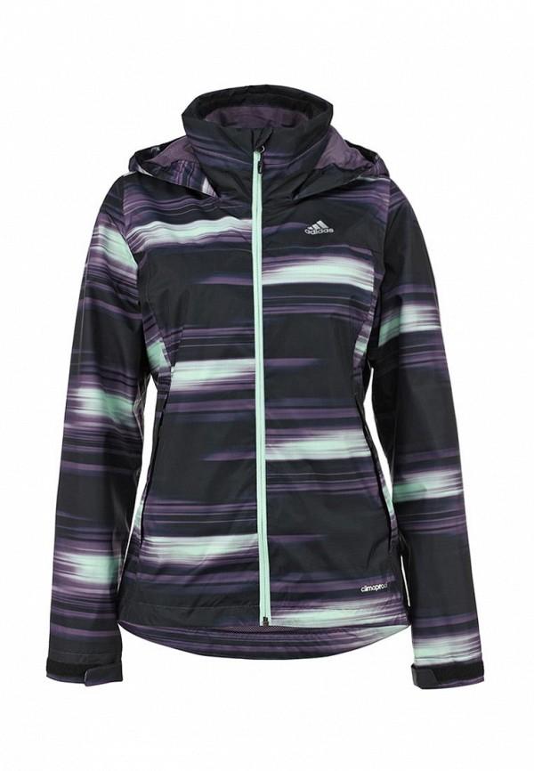 Толстовка Adidas Originals (Адидас Ориджиналс) AB2732: изображение 1