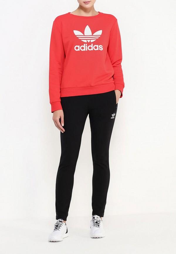 Толстовка Adidas Originals (Адидас Ориджиналс) AY8118: изображение 3