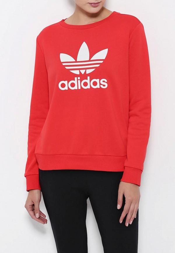 Толстовка Adidas Originals (Адидас Ориджиналс) AY8118: изображение 4