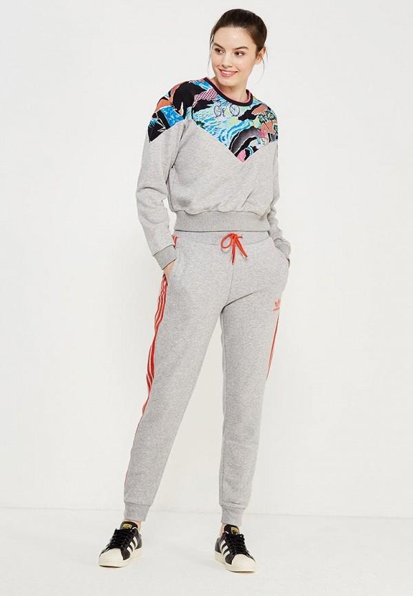 Фото Свитшот adidas Originals. Купить с доставкой