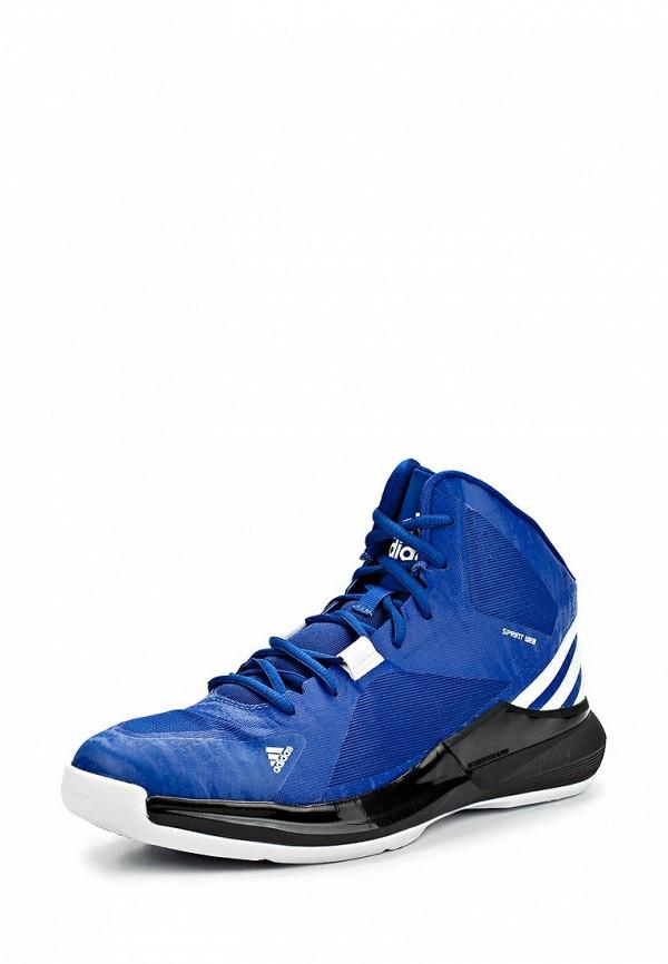 Мужские кроссовки Adidas Performance (Адидас Перфоманс) C75538: изображение 1
