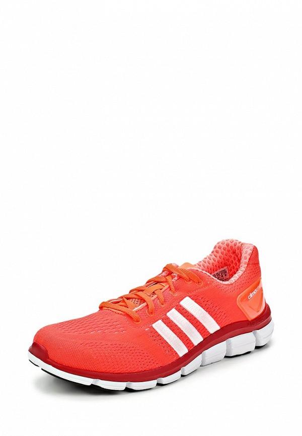 Мужские кроссовки Adidas Performance (Адидас Перфоманс) M18189: изображение 1