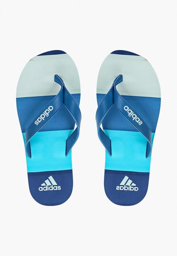 Сланцы adidas adidas AD094AMQIJ42 сланцы adidas adidas ad002awalwy2