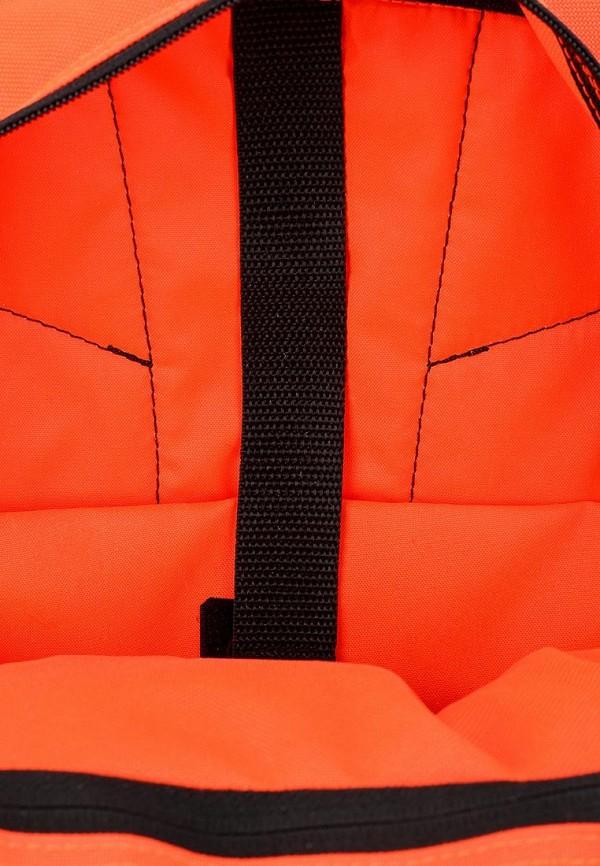 Туристический рюкзак Adidas Performance (Адидас Перфоманс) M67245: изображение 3