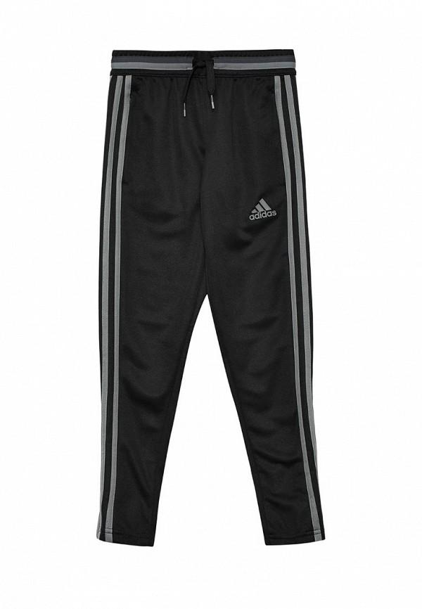 Спортивные брюки Adidas Performance (Адидас Перфоманс) AN9855