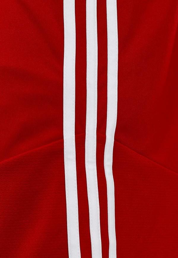 Мужские спортивные шорты Adidas Performance (Адидас Перфоманс) Z20540: изображение 4