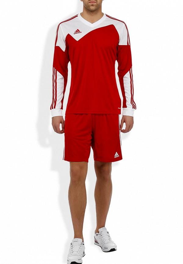 Мужские спортивные шорты Adidas Performance (Адидас Перфоманс) Z20540: изображение 6