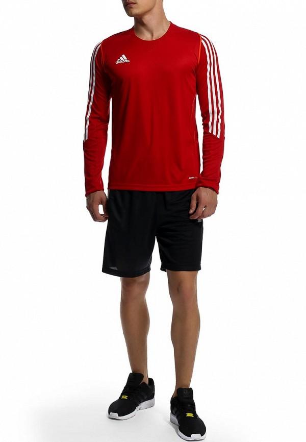 Мужские спортивные шорты Adidas Performance (Адидас Перфоманс) F48835: изображение 3