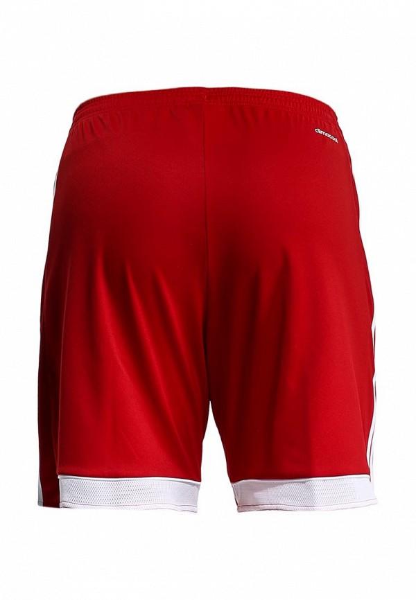 Мужские спортивные шорты Adidas Performance (Адидас Перфоманс) F50568: изображение 3