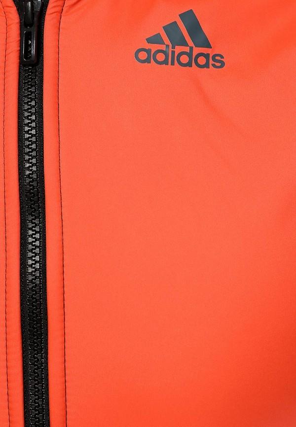 Спортивный костюм Adidas Performance (Адидас Перфоманс) S19971: изображение 2