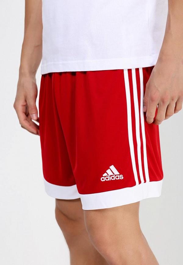 Мужские спортивные шорты Adidas Performance (Адидас Перфоманс) S22355: изображение 2