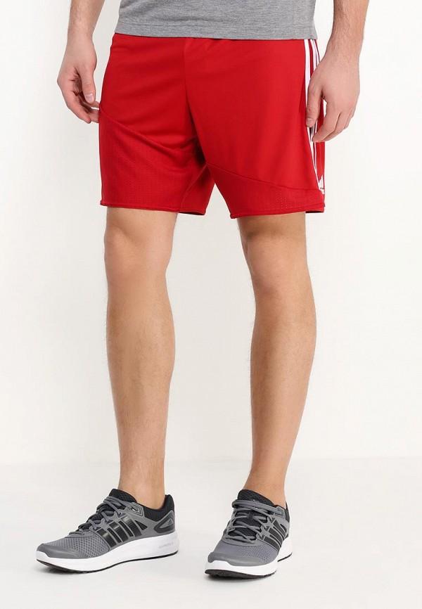 Мужские спортивные шорты Adidas Performance (Адидас Перфоманс) AP0553: изображение 3