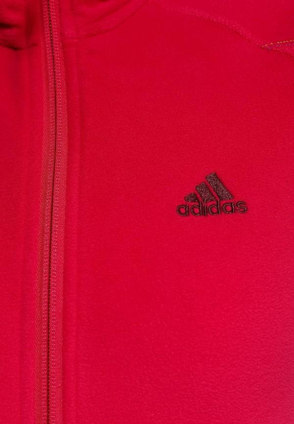 Олимпийка Adidas Performance (Адидас Перфоманс) F88664: изображение 3