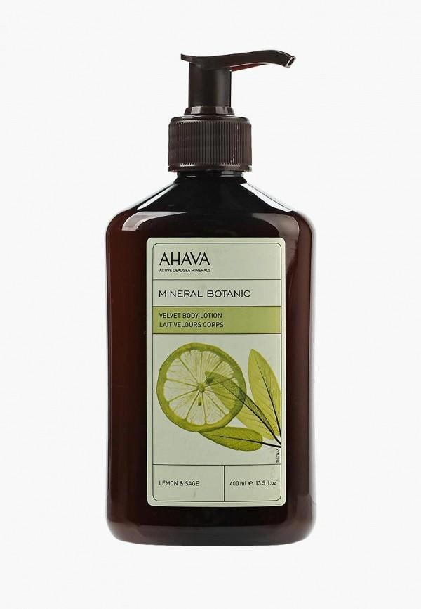 Крем для тела Ahava Ahava AH002LWSDW52 ahava deadsea plants caressing body sorbet нежный крем для тела мандарин и кедр 350 мл