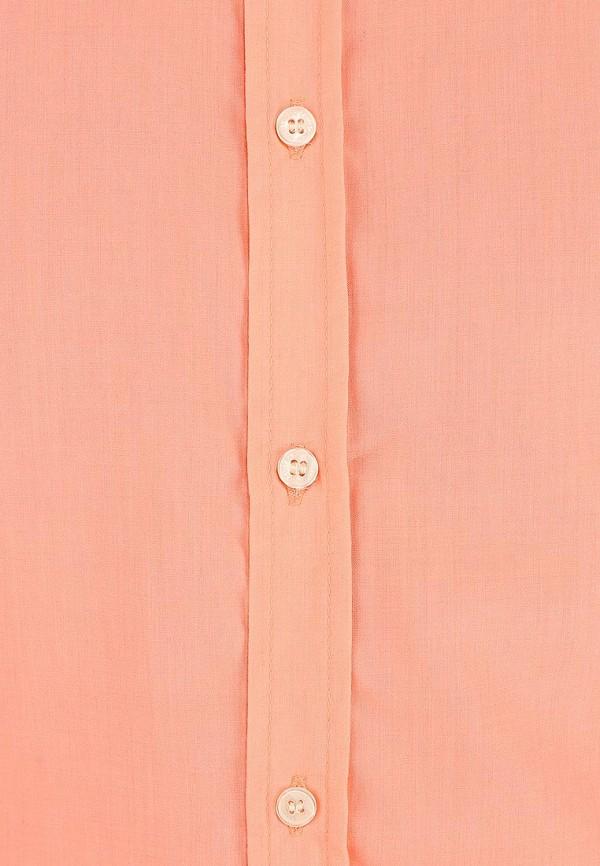 Рубашка с коротким рукавом Alcott CF376UO  C381 CORAL: изображение 3