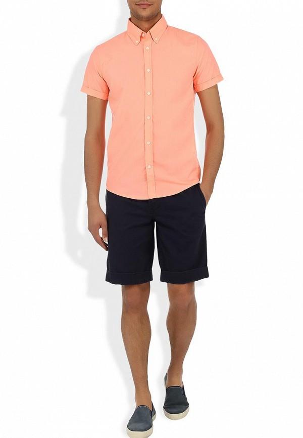 Рубашка с коротким рукавом Alcott CF376UO  C381 CORAL: изображение 5