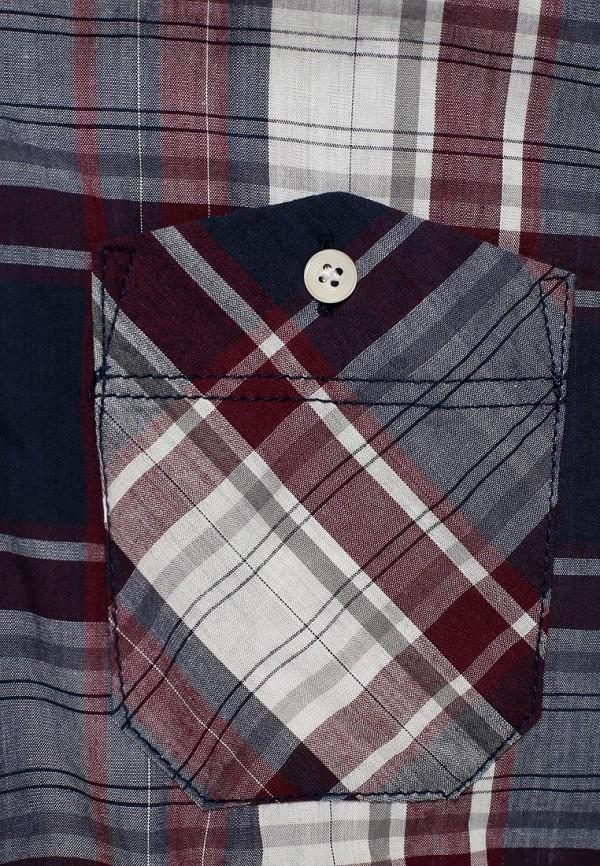 Рубашка с длинным рукавом Alcott CF1161UO: изображение 2