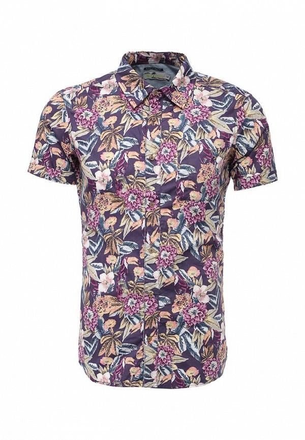 Рубашка с коротким рукавом Alcott CF1192UO: изображение 1
