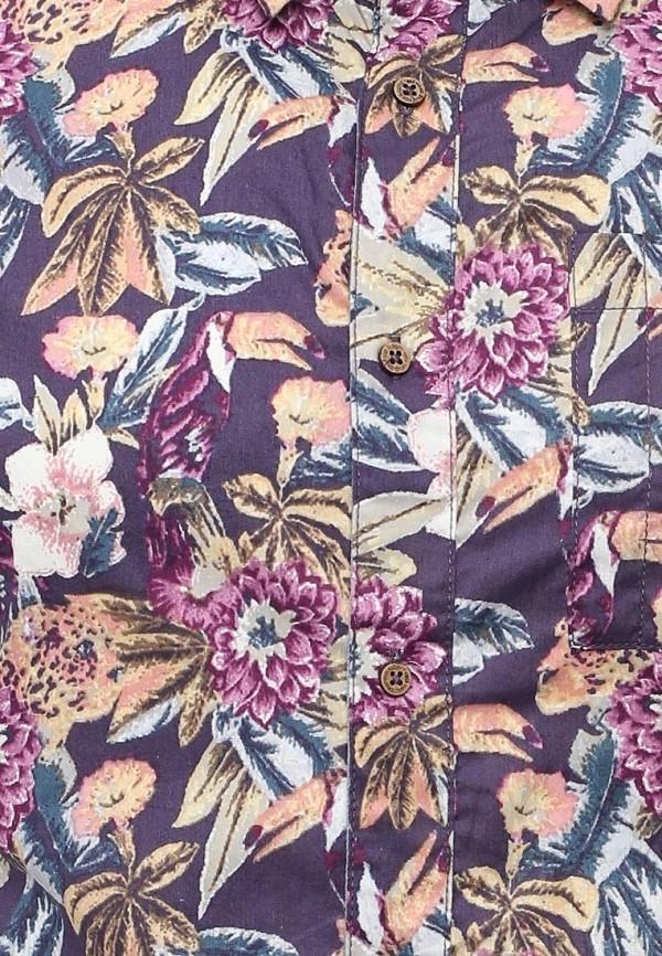 Рубашка с коротким рукавом Alcott (Алкотт) CF1192UO: изображение 5