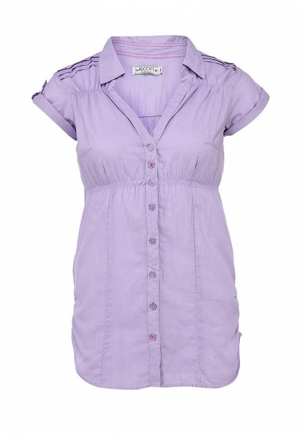 Блуза Alcott CF716DO C475 LILLAC: изображение 1