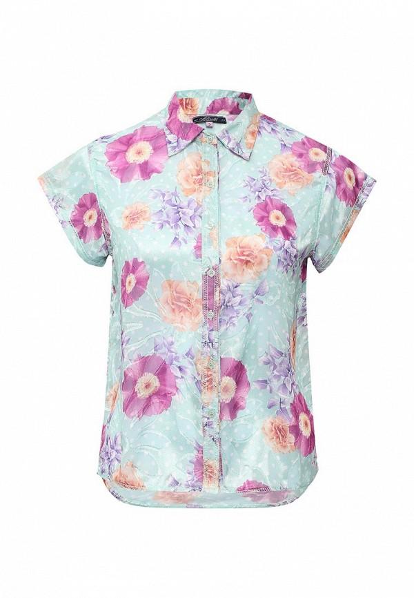 Блуза Alcott CF1063DO: изображение 5