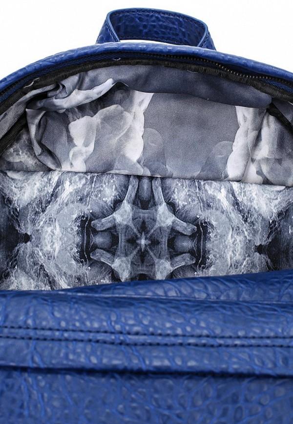 Городской рюкзак Aldo HACKLACK: изображение 3