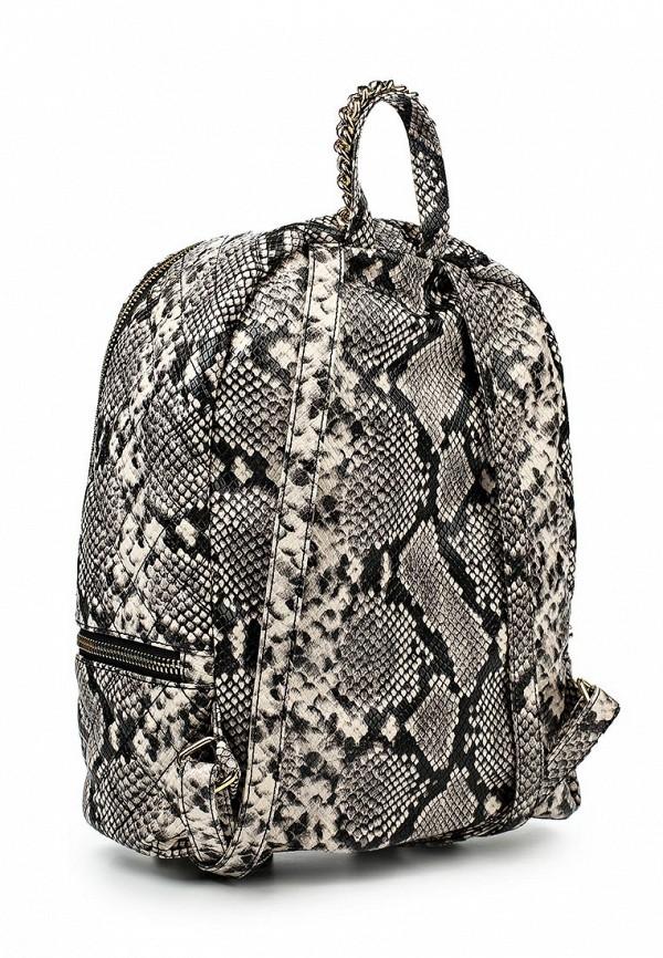 Городской рюкзак Aldo DEROLPHI: изображение 2