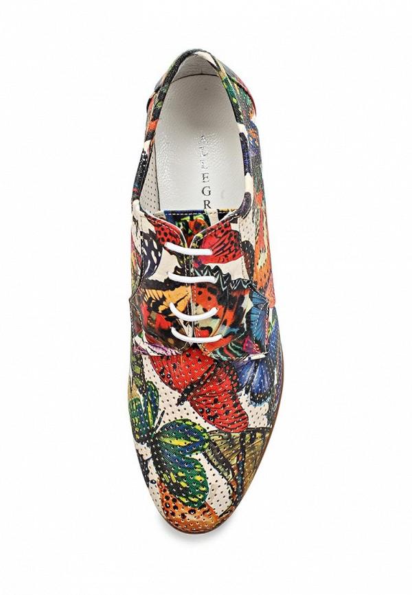 Женские ботинки Allegri 13700-4579: изображение 4