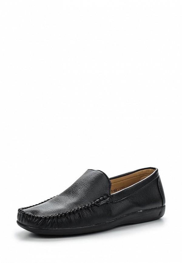 Мужские мокасины Alizea by WS Shoes C-01-1: изображение 1