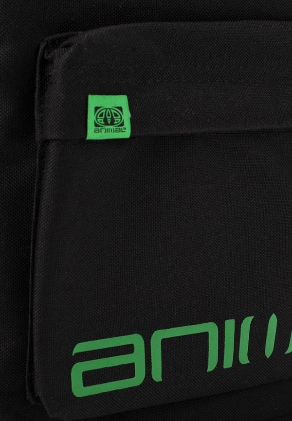 Рюкзак Animal LU4SE021: изображение 2