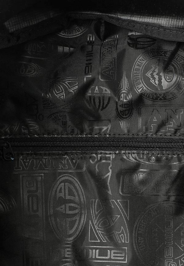 Городской рюкзак Animal LU6SJ003: изображение 3