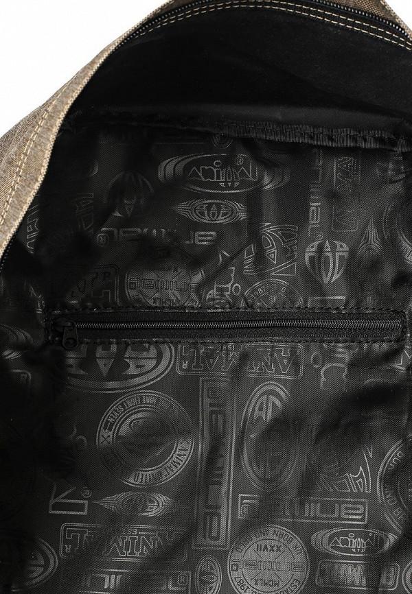 Городской рюкзак Animal LU6SJ005: изображение 3