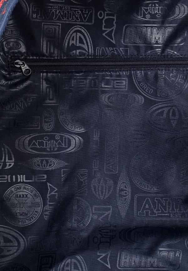 Городской рюкзак Animal LU6SJ007: изображение 3