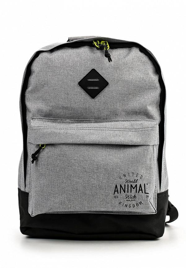 Городской рюкзак Animal LU6WJ003: изображение 1