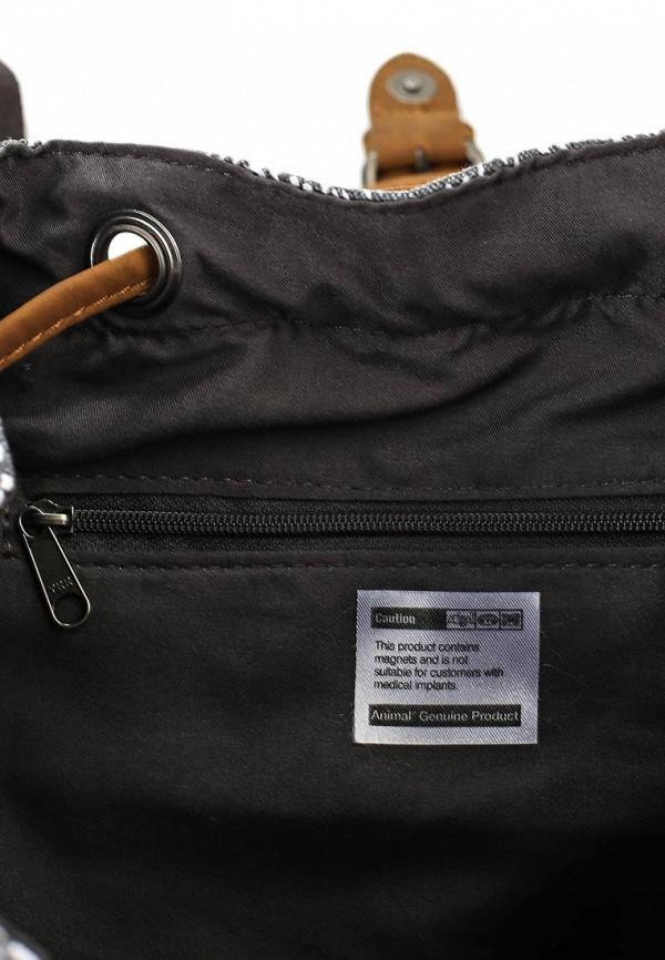 Городской рюкзак Animal LU6SJ305: изображение 3