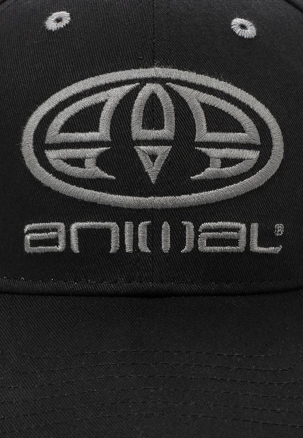 Бейсболка Animal BC6SJ001: изображение 3