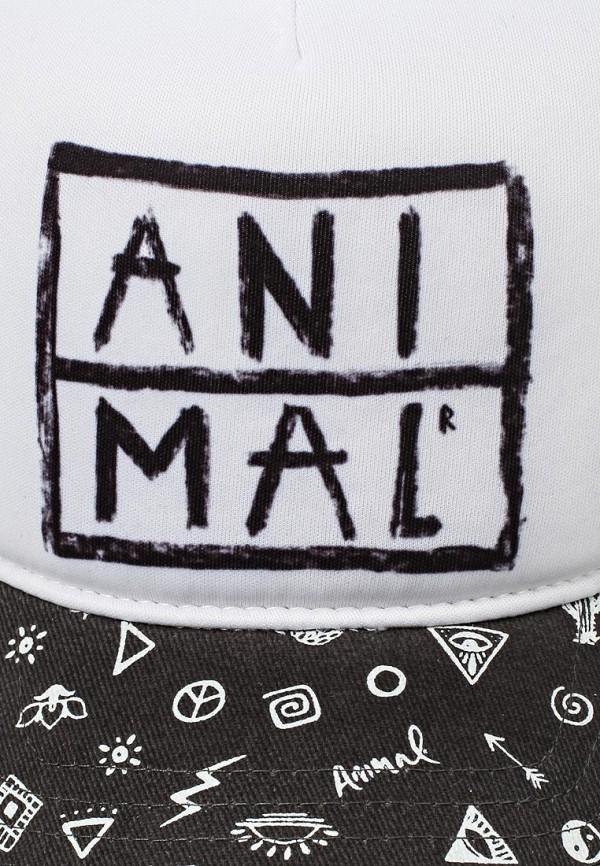 Кепка Animal BC6SJ305: изображение 3
