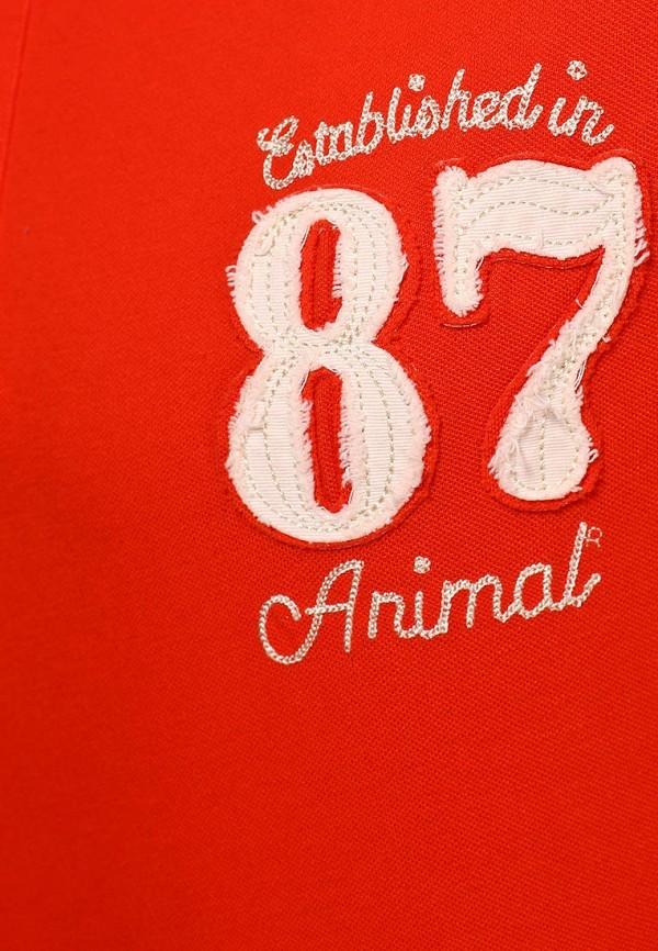 Мужские поло Animal CL4SE093: изображение 3