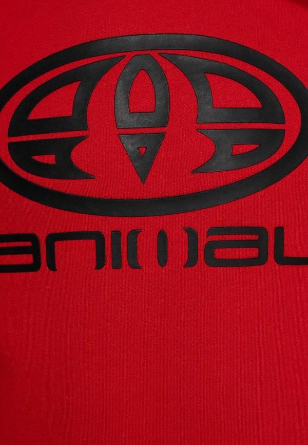Мужские худи Animal CL4SE095: изображение 3