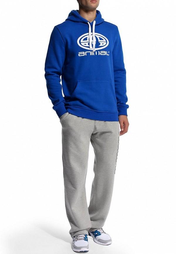 Мужские спортивные брюки Animal CL4SE174: изображение 5