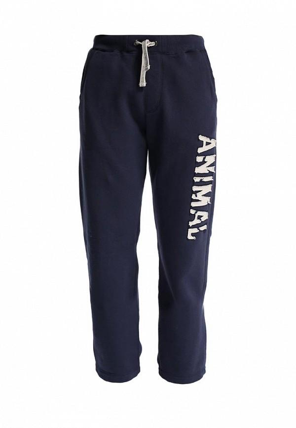 Мужские спортивные брюки Animal CL4SE174: изображение 1