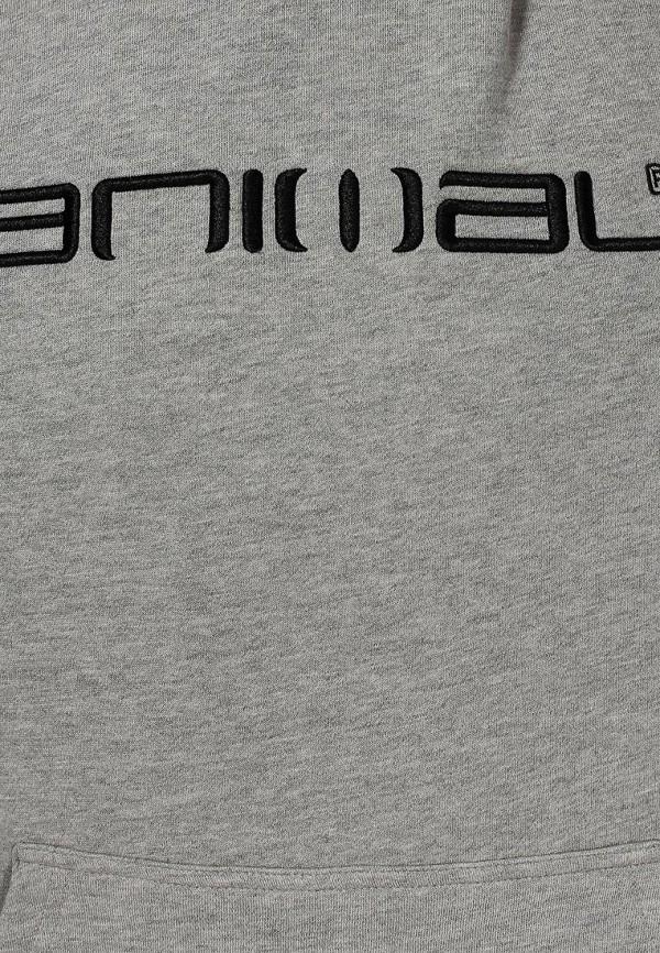 Мужские худи Animal CL4WE090: изображение 2