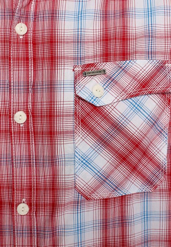 Рубашка с длинным рукавом Animal CL4WE123: изображение 3