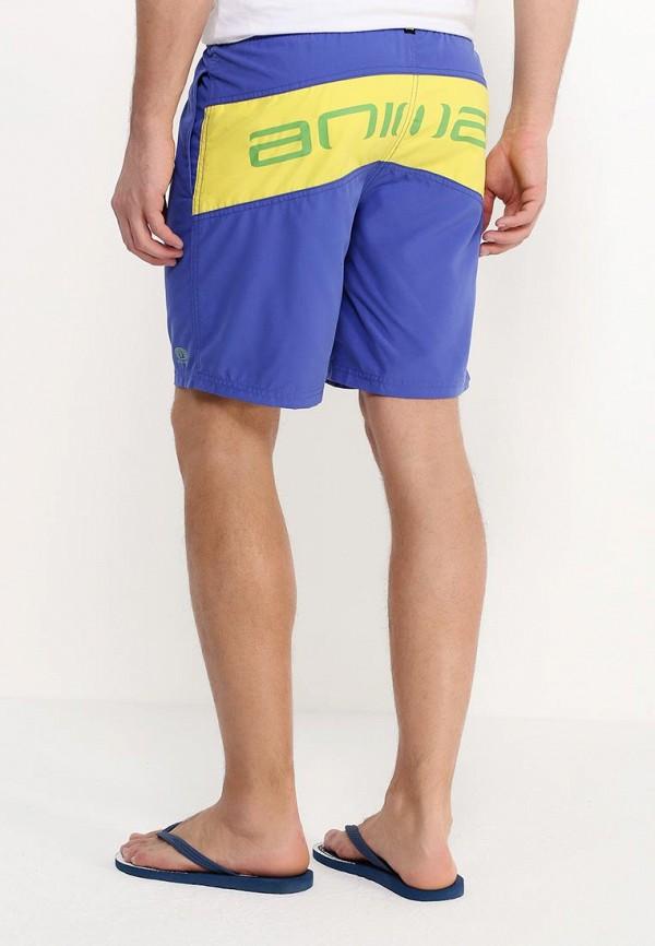 Мужские шорты для плавания Animal CL6SJ003: изображение 8