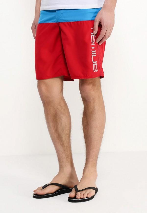 Мужские шорты для плавания Animal CL6SJ008: изображение 3