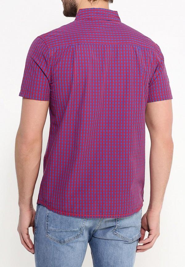 Рубашка с коротким рукавом Animal CL6SJ164: изображение 4
